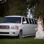 SUV Limousines 10-20 passengers